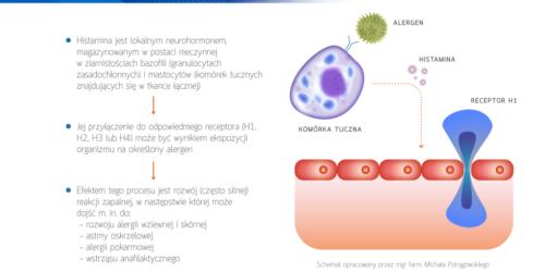 Aktualne trendy w leczeniu alergii