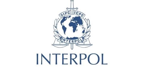 Interpol ostrzega przed nielegalnymi suplementami