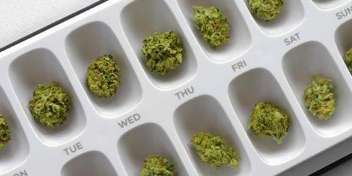 Kannabinoidy jako leki