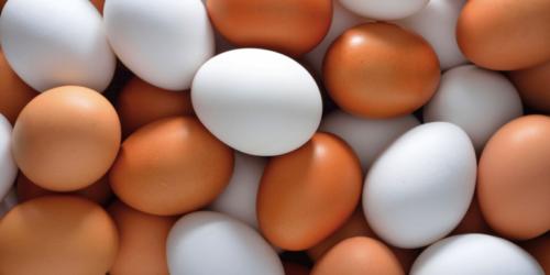 Jajka – nie tylko na Wielkanoc