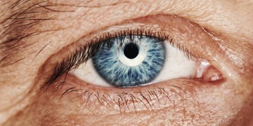 Komórki macierzyste a ślepota rogówkowa
