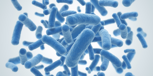 Nowy lek pomoże w walce z opornymi bakteriami