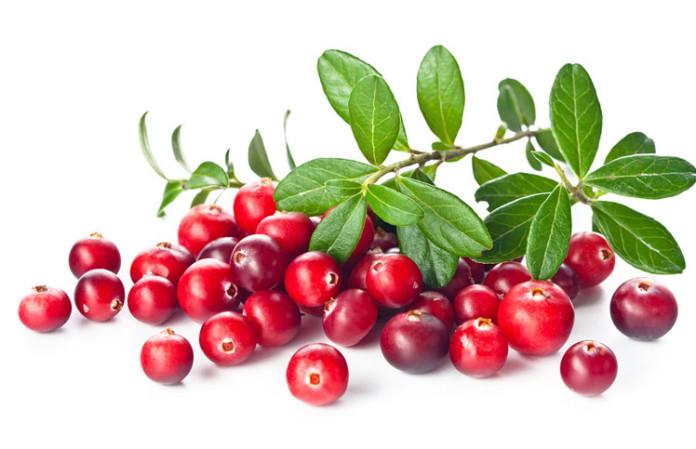 cranberry-protein-696x449.jpg
