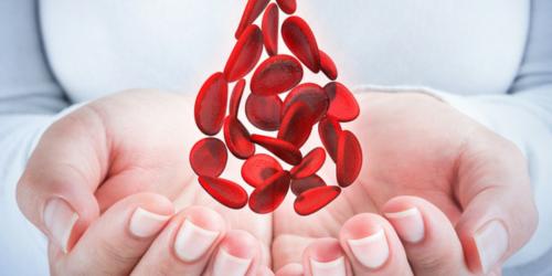 Krwiodawcy w Wieliczce