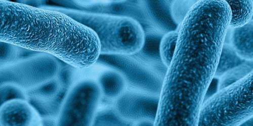 Probiotyki pomocne w zaburzeniach psychicznych