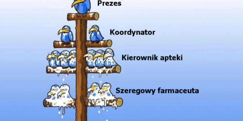 Dwie opcje aptekarstwa w Polsce – część 1