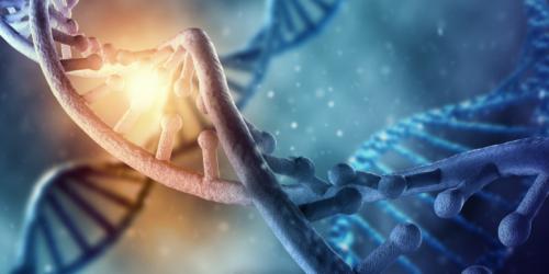 Naprawa uszkodzeń DNA a karcynogeneza