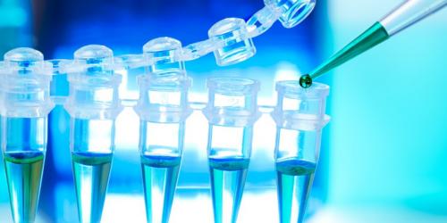 Biomed zadłużony, ale inwestuje dalej
