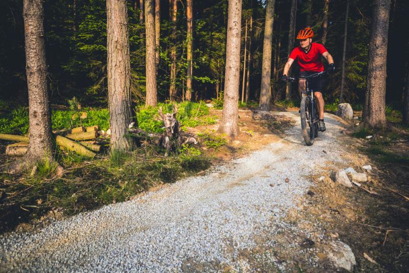 Mężczyzna jedzie na rowerze przez las.