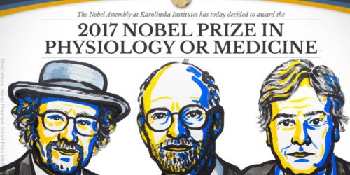 Nagroda Nobla za zegar biologiczny
