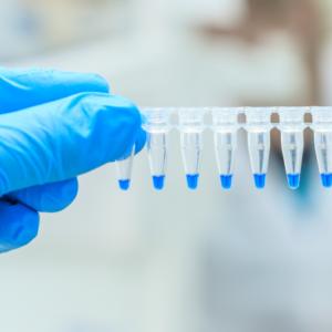 Wroga trzeba poznać, czyli genetyka w poszukiwaniu leku na COVID-19