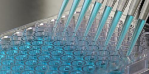 Test wykryje 70 genów odpowiedzialnych za nowotwory