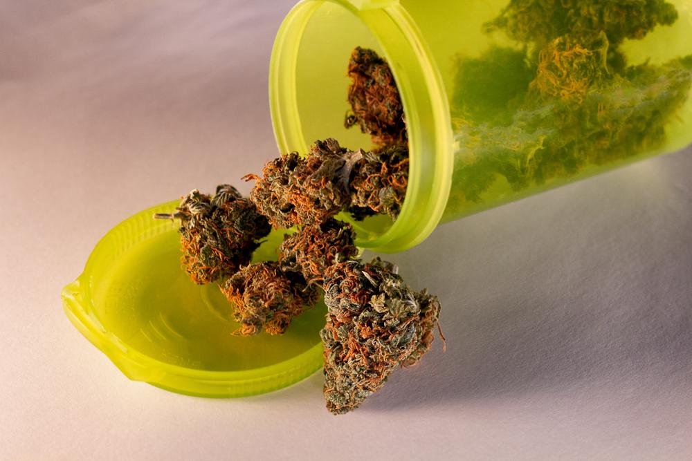 Medyczna marihuana po raz drugi trafiła do Polski (fot. Shutterstock)