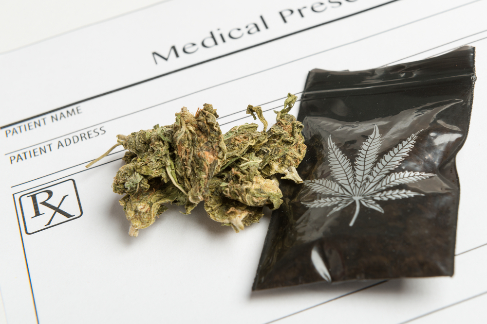 Marihuana medyczna nie jest zalecana w przypadku ciężkiej padaczki opornej na leczenie oraz przewlekłego bólu (fot. Shutterstock).