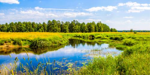 Komisja Europejska zbadała poziom zanieczyszczenia środowiska lekami