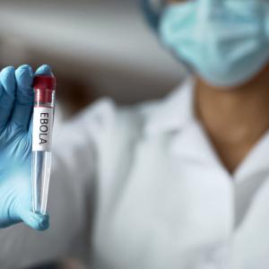 Panaceum na Ebolę