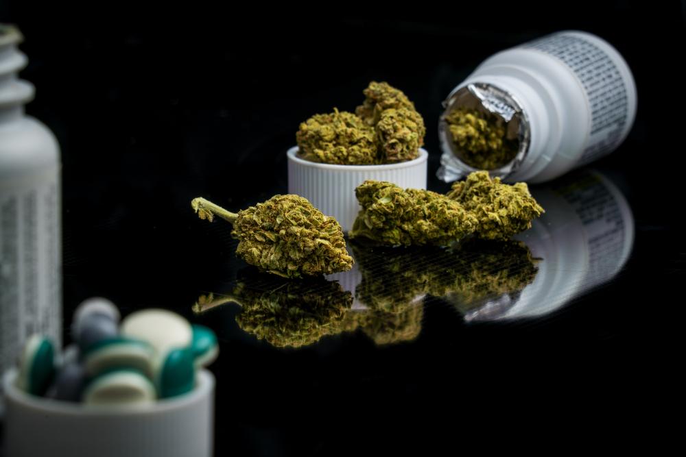 W ankietach farmaceuci najczęściej zgłaszali obawę stosowania marihuany przez pacjentów w tzw. celach rekreacyjnych (fot. Shutterstock)