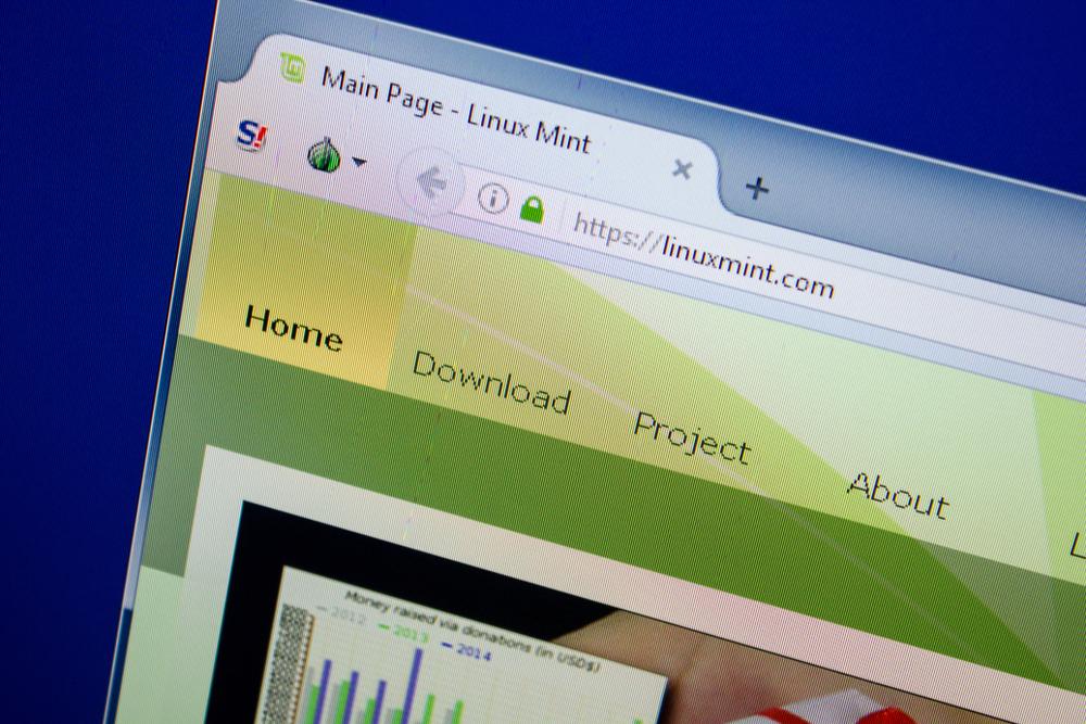 System Linux Mint 19.2 domyślnie instaluje się dosyć bogatą biblioteką oprogramowania, które jest od razu gotowe do działania (fot. Shutterstock)
