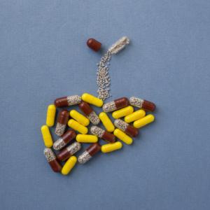 Fosfolipidy: czy wszystkie działają tak samo?
