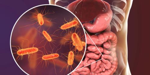 Immuno plus – kompleksowy preparat na bazie sprawdzonych składników
