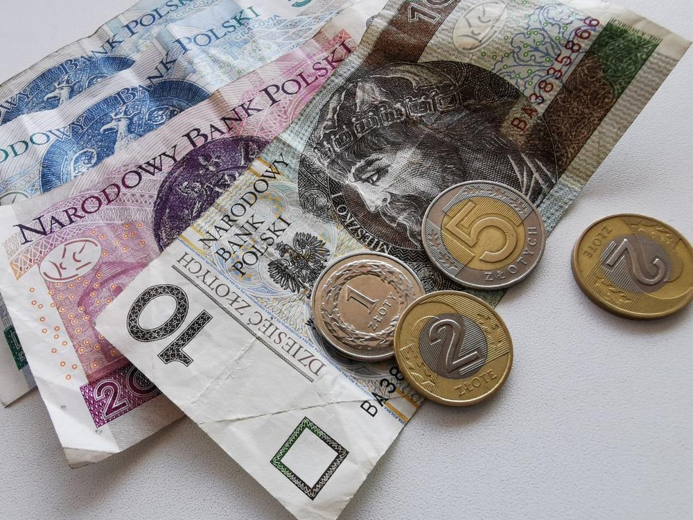 Raport dotyczący rentowności polskich aptek ma być gotowy w ciągu najbliższych tygodni (fot. Shutterstock)