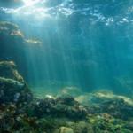 Robot Hercules przeszuka dno oceanu w celu odnalezienia składników do nowych leków
